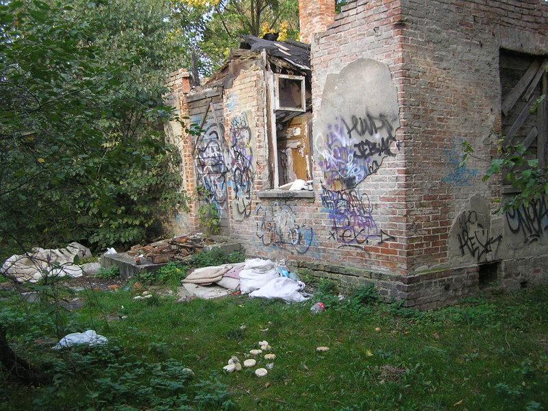 Śmieci w pobliżu Dworku Grochowskiego