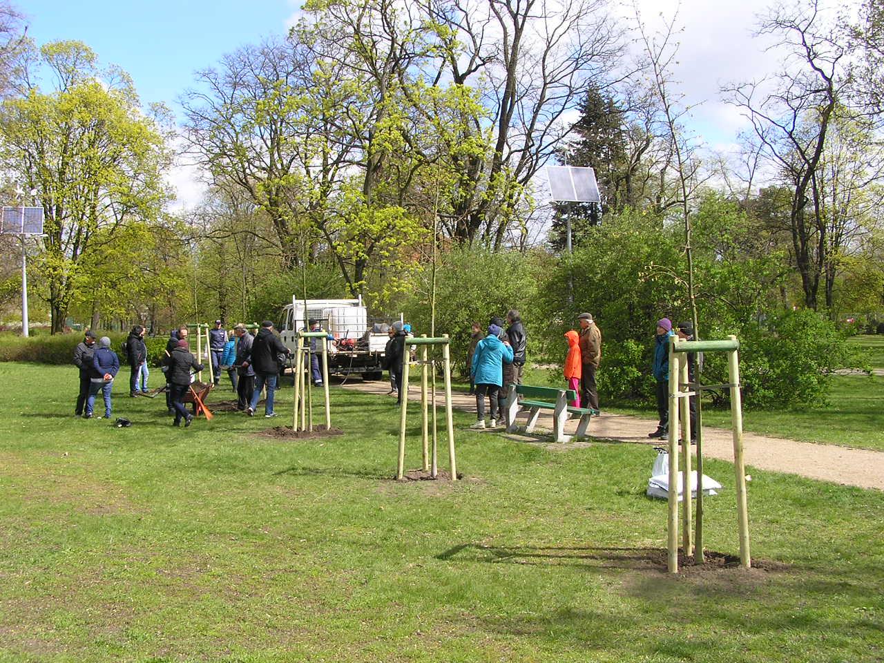 Bardziej zielono w parku