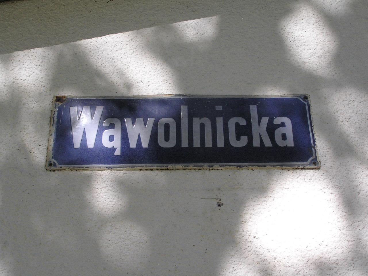 Tablica z nazwą ulicy - Wąwolnicka 1A