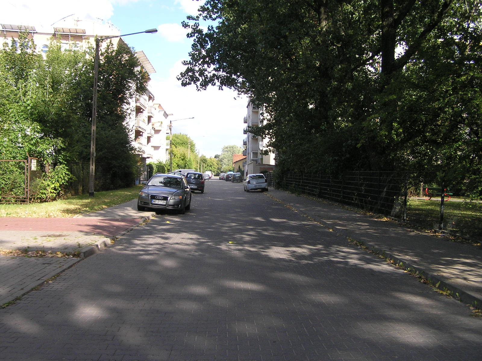 Ulica Nizinna