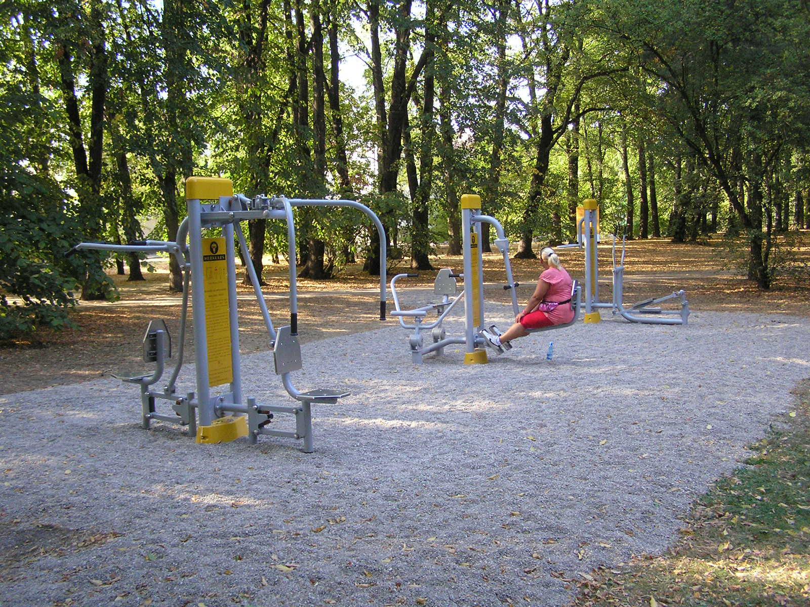 W Parku Leśnika zadbamy o kondycję. Jest nowa siłownia plenerowa