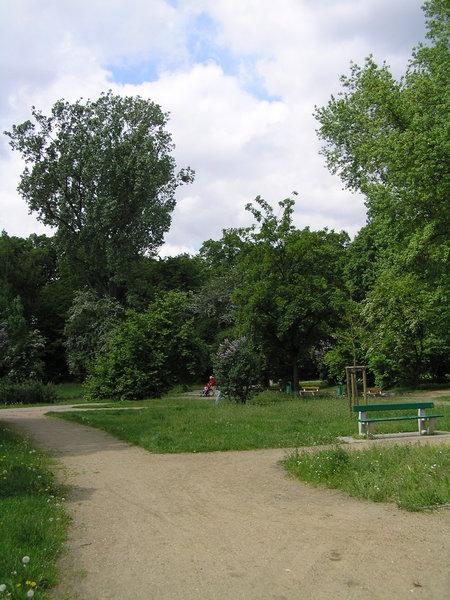 Spotkanie w sprawie rewitalizacji parku