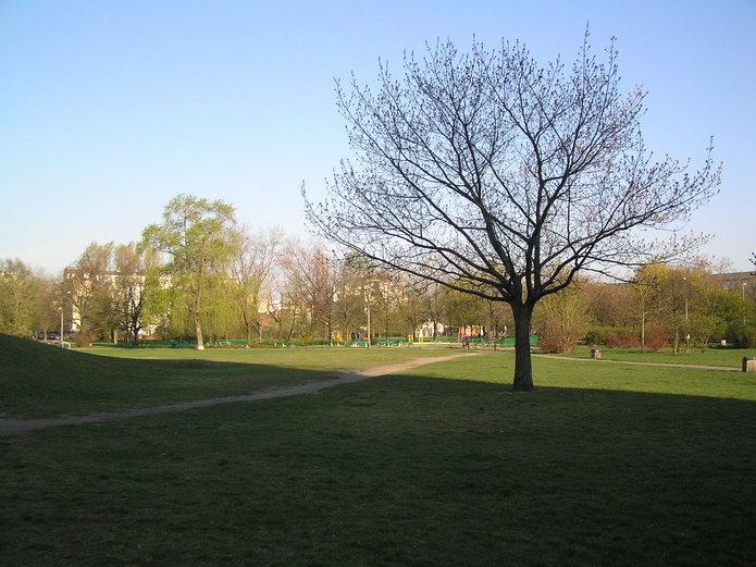 Park Polińskiego zostanie zmodernizowany