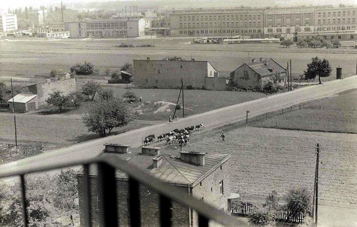 Ulica Międzyborska w latach 60-tych XX., fot. W. Śliwiński