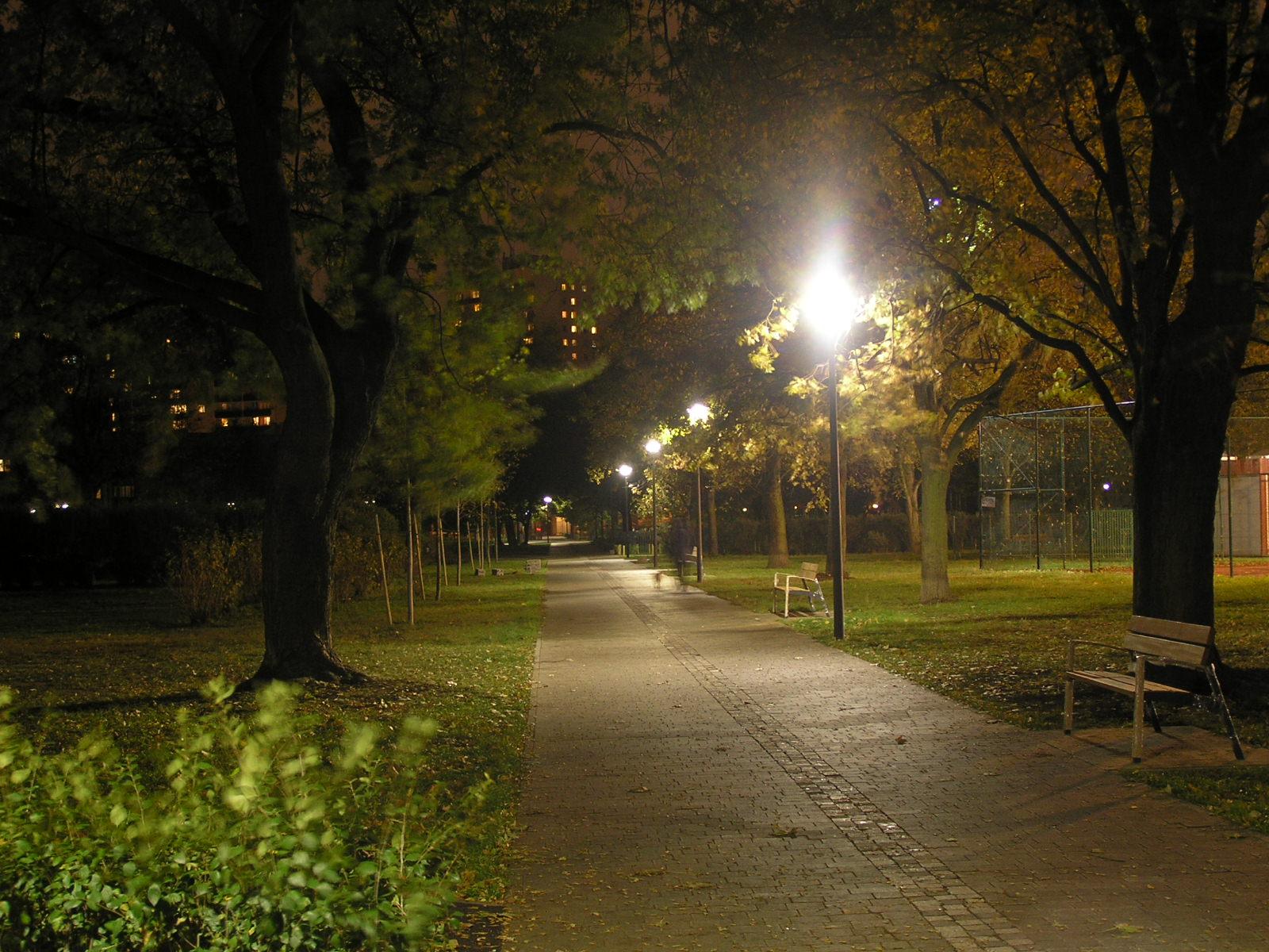 Oświetlony park Polińskiego zachęca do romantycznych spacerów