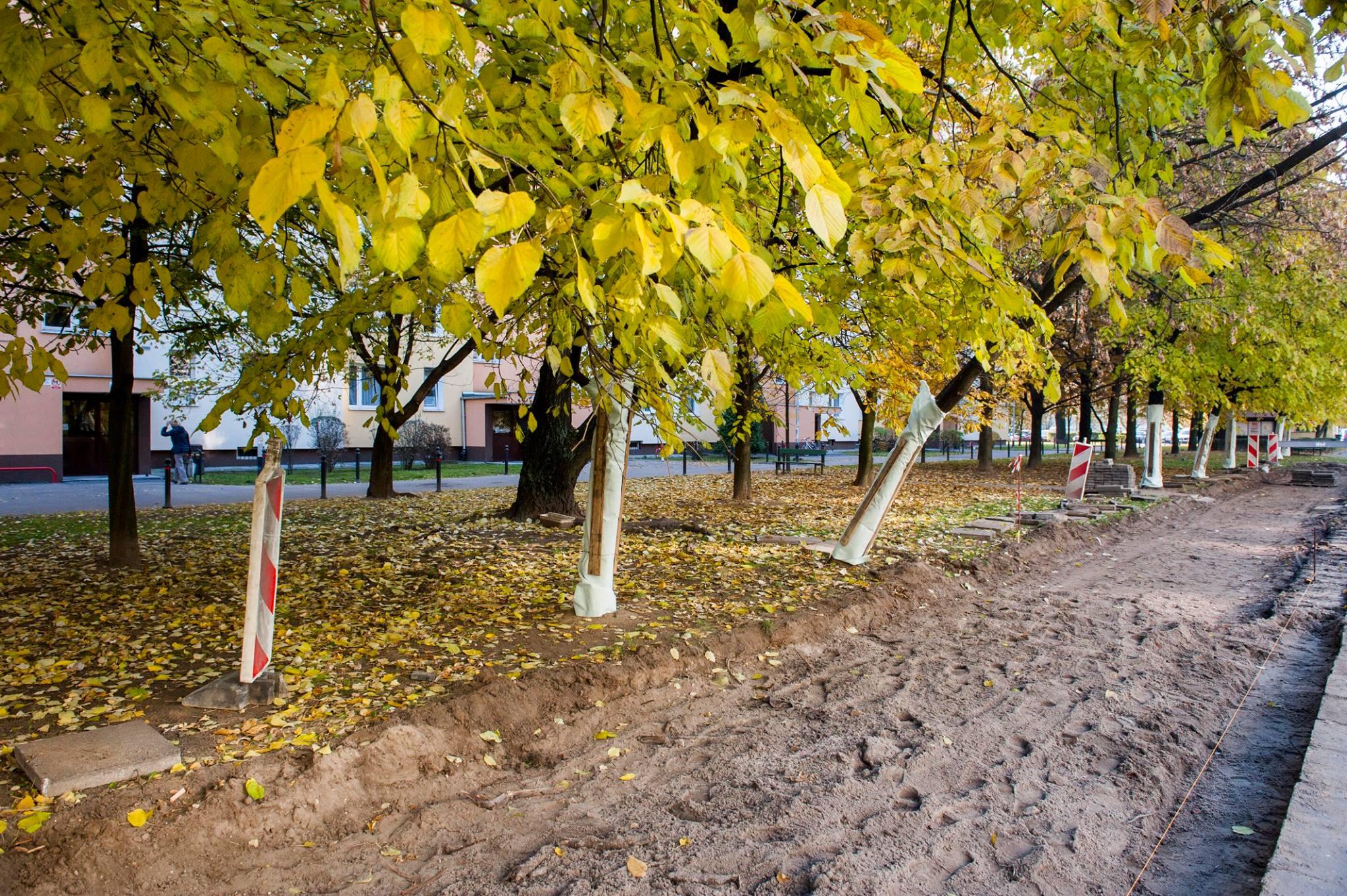 Trwa budowa drogi dla rowerów na ulicy Łukowskiej