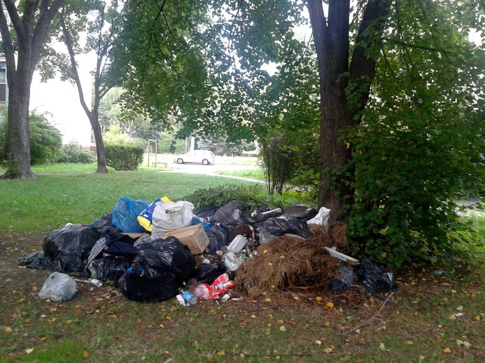 List: Zaśmiecony teren na ulicy Kinowej