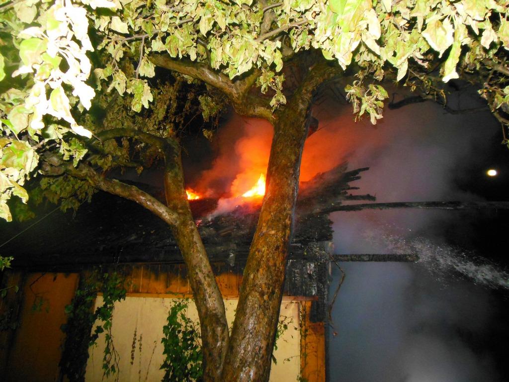 Na działkach przy Kinowej spłonęła altanka