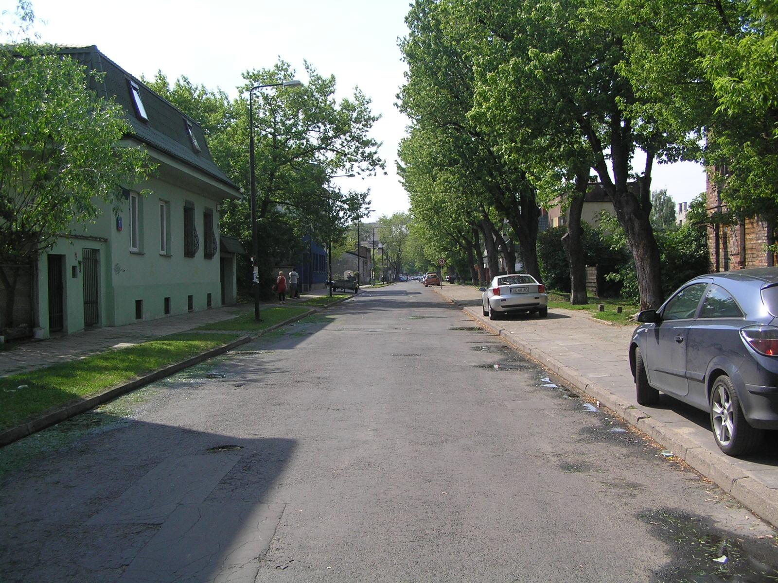 383 drzewa posadzono na Pradze Południe