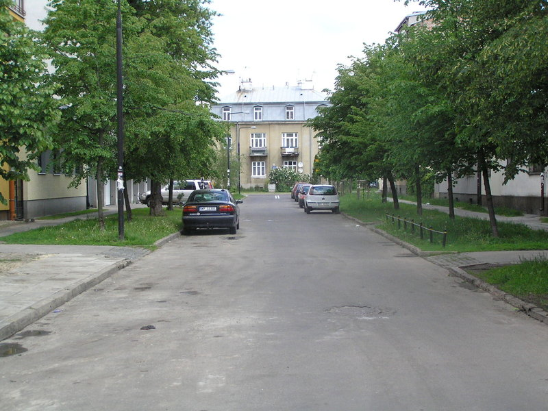 Ulica Domeyki