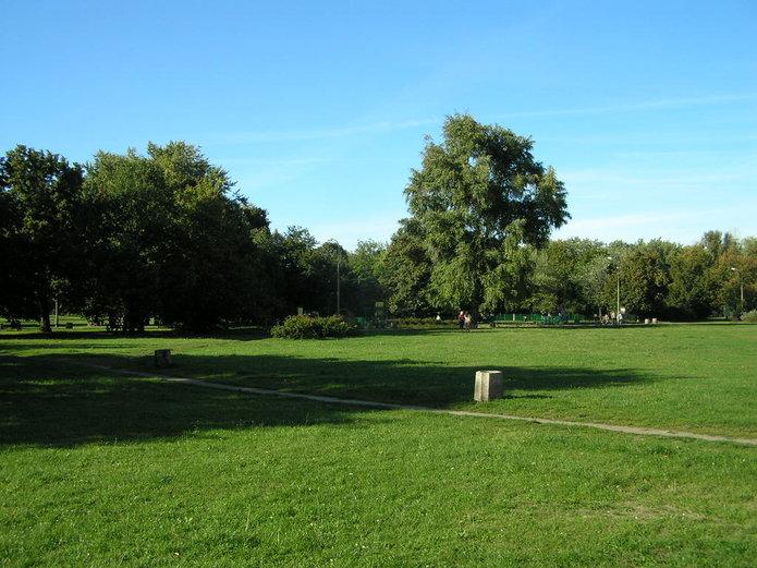 Pięciu wykonawców zainteresowanych przebudową parku Polińskiego