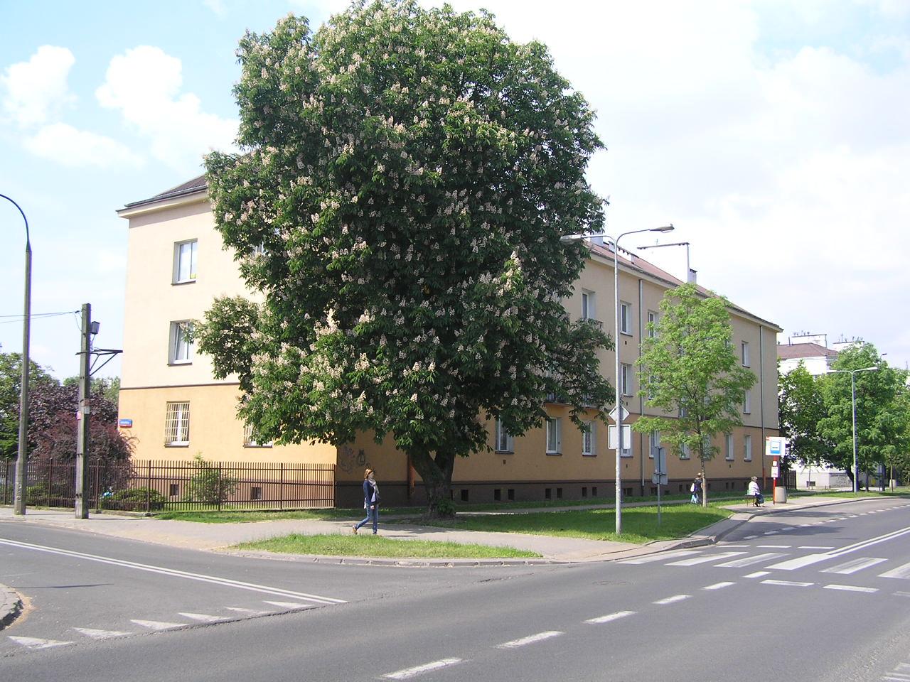 Żółkiewskiego 32A