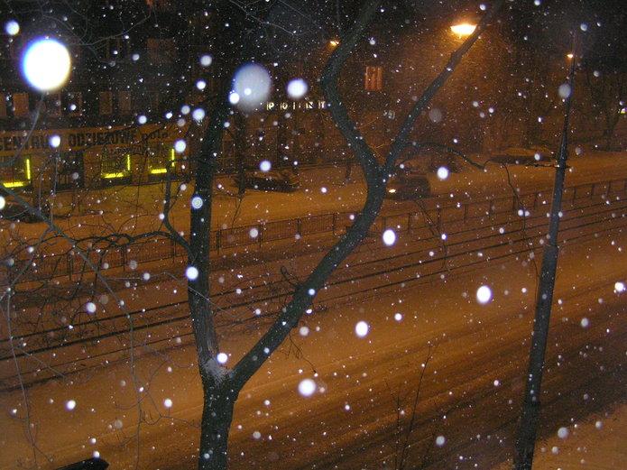 Konsultacje: Czy zimą sypać sól na ulice?