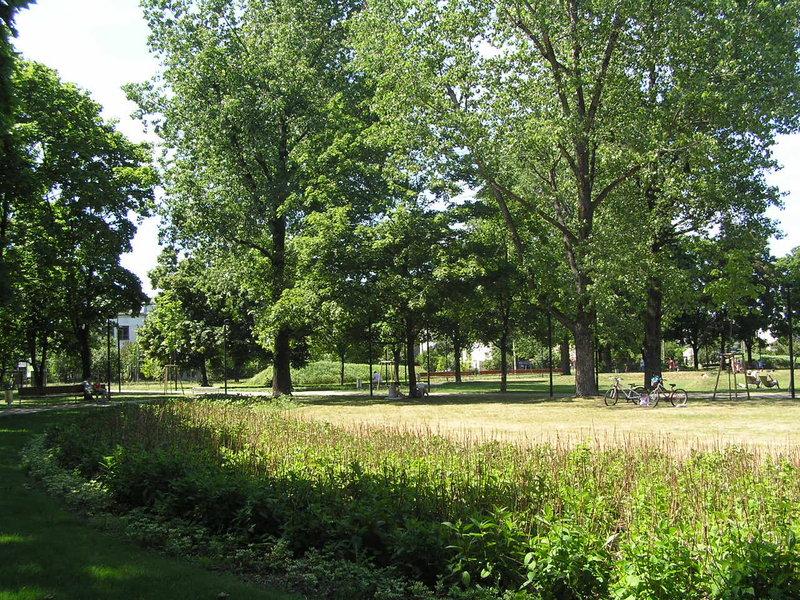 Park Znicza