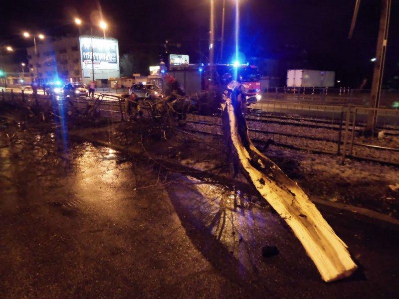 Huragan złamał drzewo rosnące na ulicy Grochowskiej