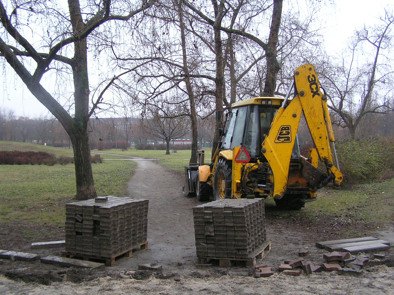Społecznicy bronią drzew w Parku Polińskiego